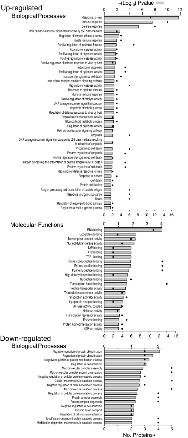 http://static-content.springer.com/image/art%3A10.1186%2F1743-422X-10-202/MediaObjects/12985_2013_2274_Fig3_HTML.jpg