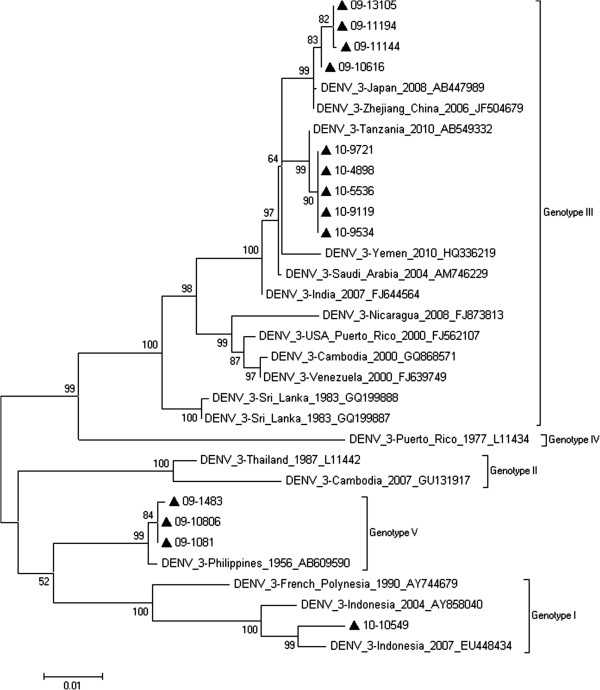 http://static-content.springer.com/image/art%3A10.1186%2F1743-422X-10-4/MediaObjects/12985_2012_1994_Fig4_HTML.jpg