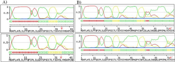 http://static-content.springer.com/image/art%3A10.1186%2F1743-422X-10-75/MediaObjects/12985_2012_2055_Fig5_HTML.jpg
