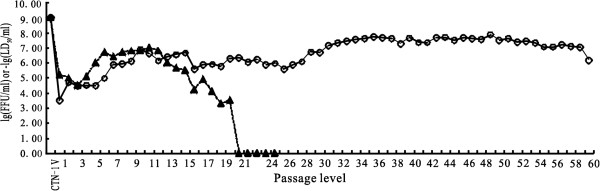 http://static-content.springer.com/image/art%3A10.1186%2F1743-422X-11-85/MediaObjects/12985_2014_2409_Fig1_HTML.jpg