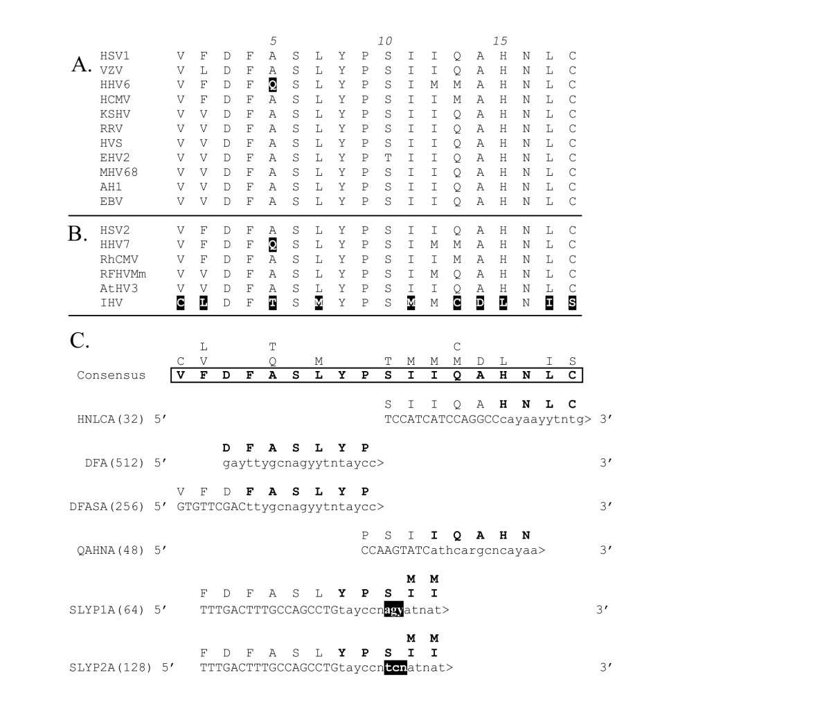 http://static-content.springer.com/image/art%3A10.1186%2F1743-422X-2-20/MediaObjects/12985_2005_Article_35_Fig5_HTML.jpg