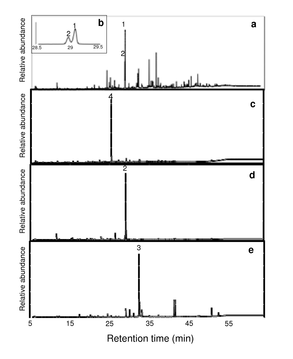 http://static-content.springer.com/image/art%3A10.1186%2F1743-422X-6-101/MediaObjects/12985_2009_Article_615_Fig4_HTML.jpg
