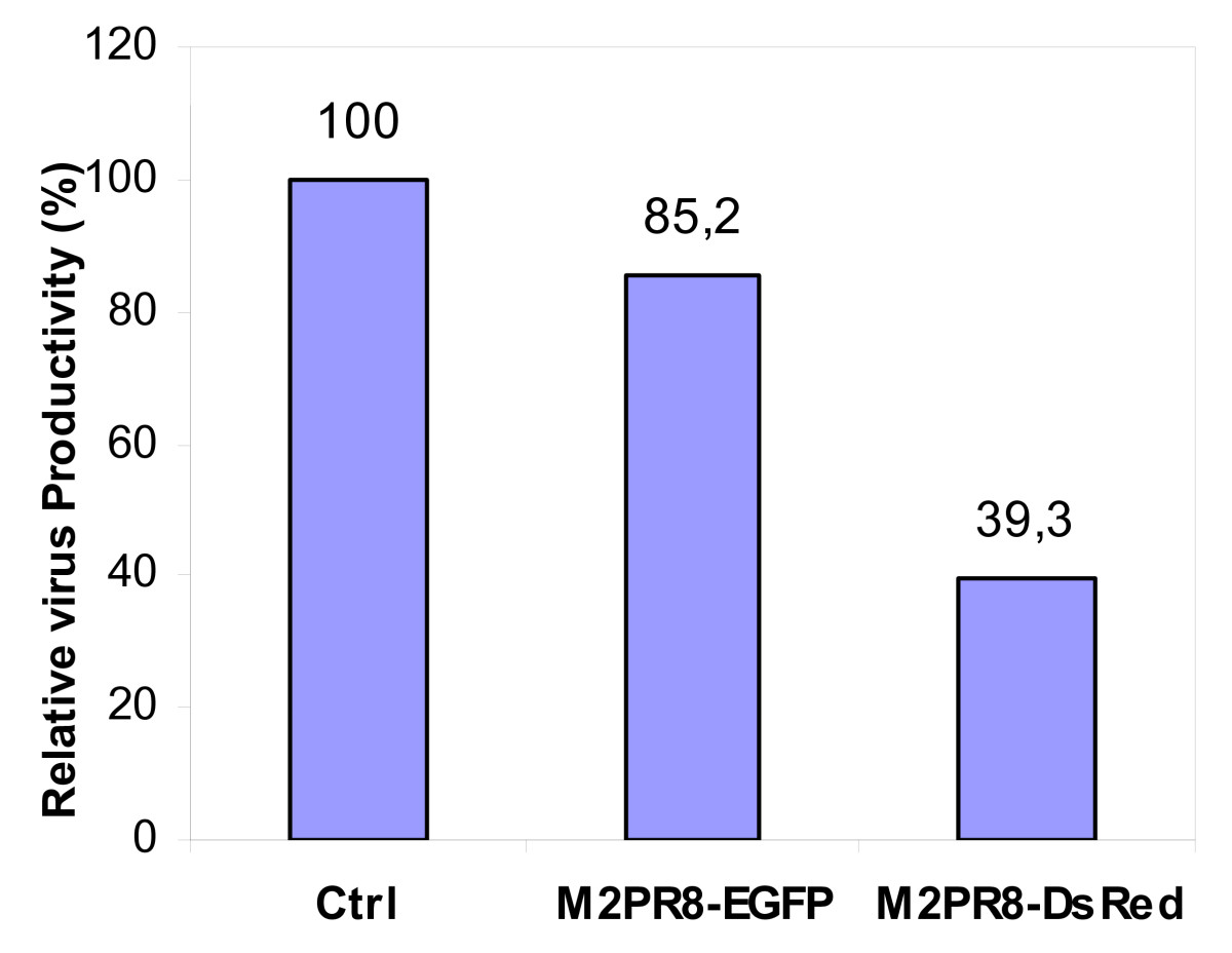 http://static-content.springer.com/image/art%3A10.1186%2F1743-422X-7-108/MediaObjects/12985_2010_Article_853_Fig4_HTML.jpg