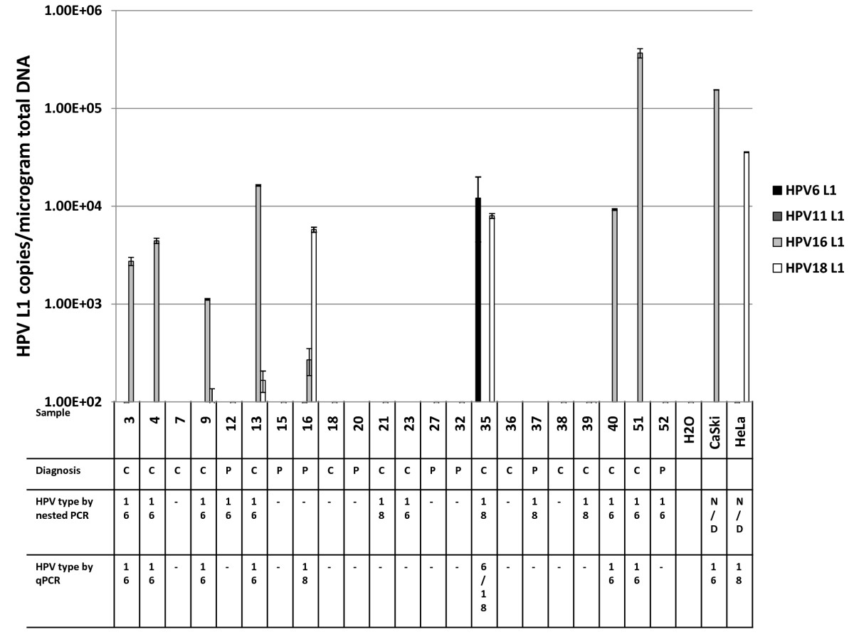 http://static-content.springer.com/image/art%3A10.1186%2F1743-422X-7-194/MediaObjects/12985_2010_Article_939_Fig5_HTML.jpg