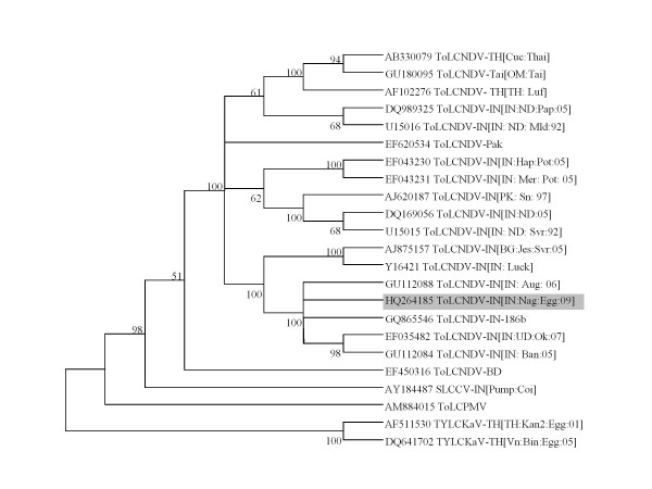 http://static-content.springer.com/image/art%3A10.1186%2F1743-422X-8-305/MediaObjects/12985_2011_1392_Fig2_HTML.jpg