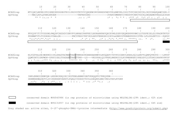 http://static-content.springer.com/image/art%3A10.1186%2F1743-422X-8-331/MediaObjects/12985_2011_1422_Fig3_HTML.jpg