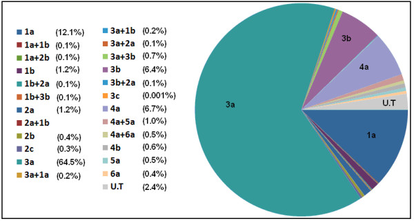 http://static-content.springer.com/image/art%3A10.1186%2F1743-422X-8-361/MediaObjects/12985_2011_1465_Fig1_HTML.jpg
