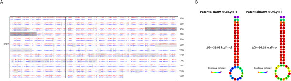 http://static-content.springer.com/image/art%3A10.1186%2F1743-422X-8-406/MediaObjects/12985_2011_1526_Fig4_HTML.jpg