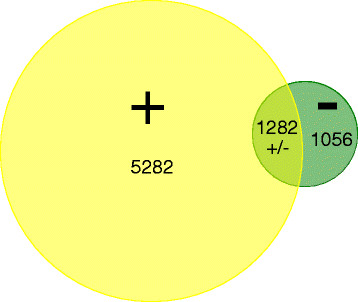 http://static-content.springer.com/image/art%3A10.1186%2F1743-422X-9-101/MediaObjects/12985_2011_1787_Fig1_HTML.jpg