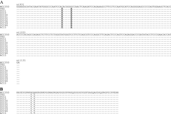 http://static-content.springer.com/image/art%3A10.1186%2F1743-422X-9-154/MediaObjects/12985_2011_1944_Fig1_HTML.jpg