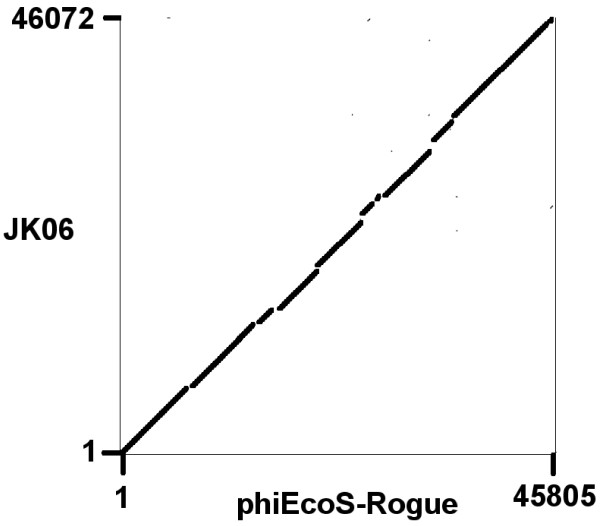 http://static-content.springer.com/image/art%3A10.1186%2F1743-422X-9-207/MediaObjects/12985_2012_1875_Fig3_HTML.jpg