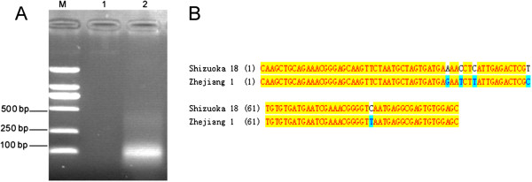 http://static-content.springer.com/image/art%3A10.1186%2F1743-422X-9-298/MediaObjects/12985_2012_2008_Fig2_HTML.jpg