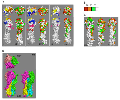 http://static-content.springer.com/image/art%3A10.1186%2F1743-422X-9-91/MediaObjects/12985_2011_1887_Fig1_HTML.jpg