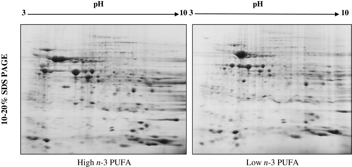 http://static-content.springer.com/image/art%3A10.1186%2F1743-7075-11-6/MediaObjects/12986_2013_Article_580_Fig1_HTML.jpg