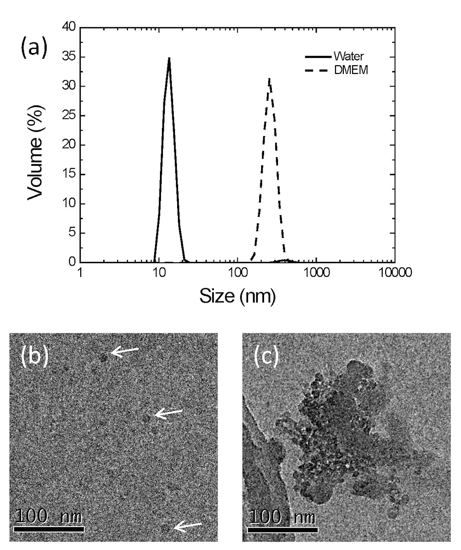 http://static-content.springer.com/image/art%3A10.1186%2F1743-8977-9-29/MediaObjects/12989_2012_Article_200_Fig1_HTML.jpg