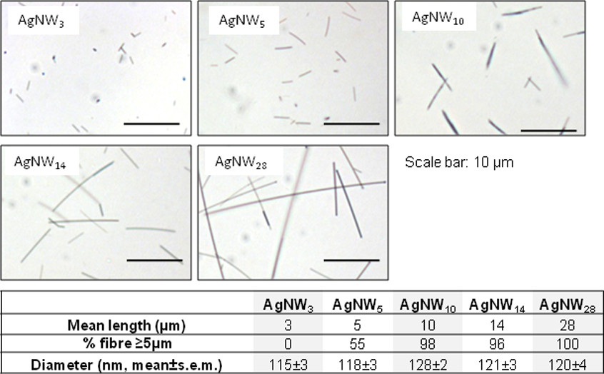 http://static-content.springer.com/image/art%3A10.1186%2F1743-8977-9-47/MediaObjects/12989_2012_Article_220_Fig1_HTML.jpg