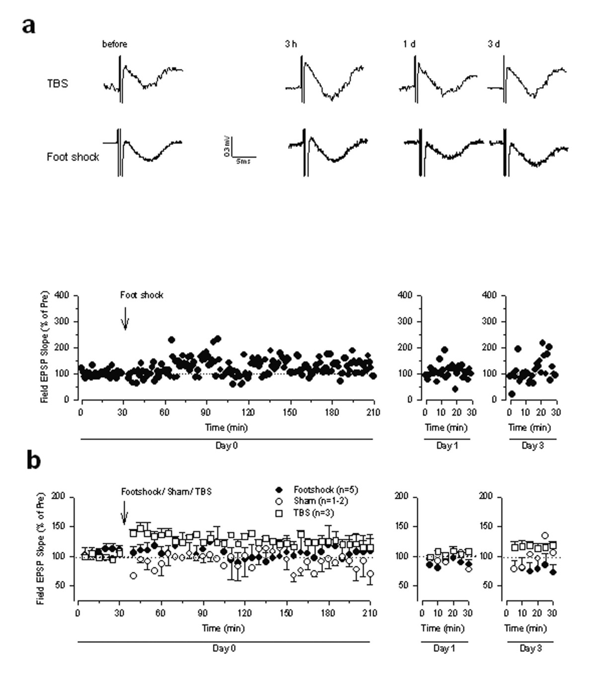 http://static-content.springer.com/image/art%3A10.1186%2F1744-8069-1-6/MediaObjects/12990_2004_Article_6_Fig9_HTML.jpg