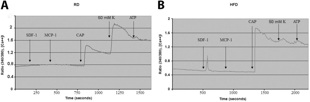 http://static-content.springer.com/image/art%3A10.1186%2F1744-8069-10-42/MediaObjects/12990_2013_Article_644_Fig2_HTML.jpg