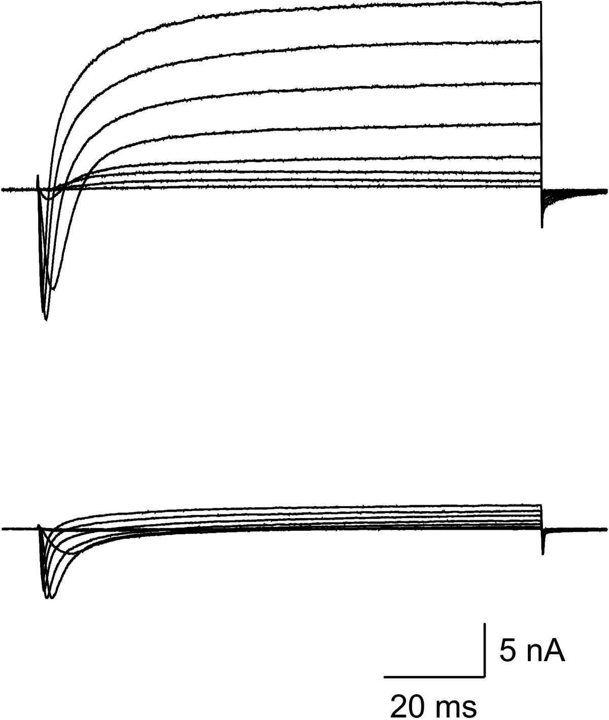 http://static-content.springer.com/image/art%3A10.1186%2F1744-8069-3-12/MediaObjects/12990_2007_Article_86_Fig3_HTML.jpg