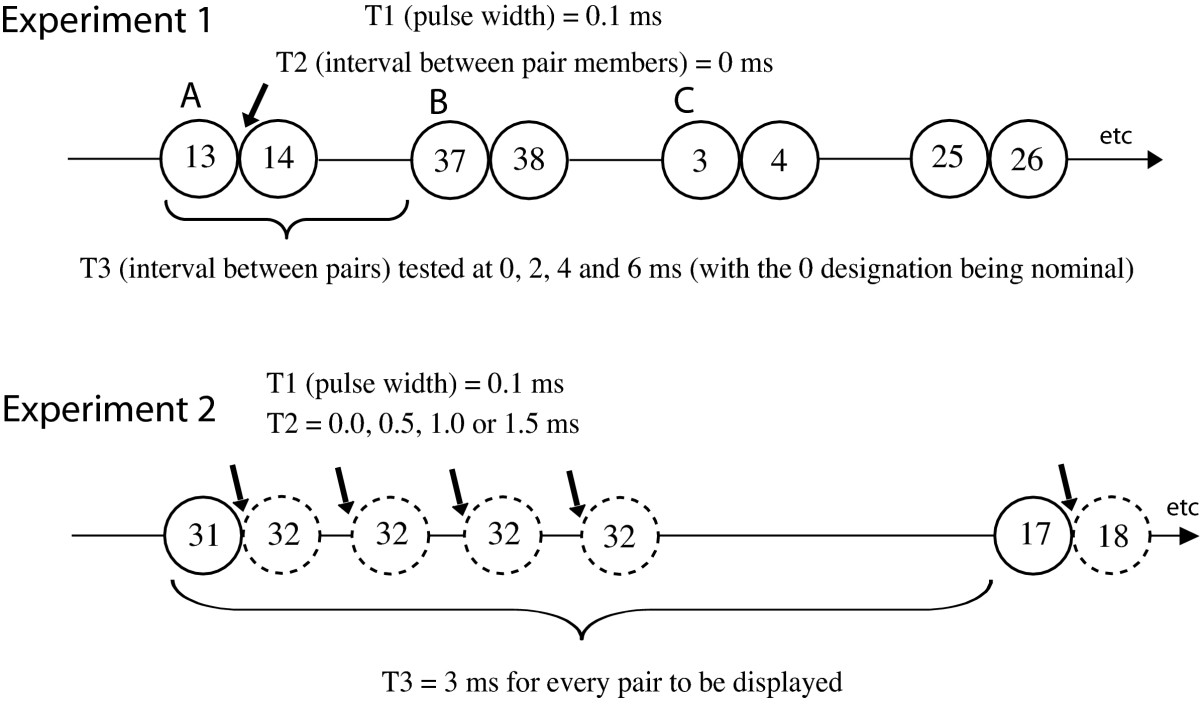 http://static-content.springer.com/image/art%3A10.1186%2F1744-9081-3-27/MediaObjects/12993_2007_Article_95_Fig4_HTML.jpg