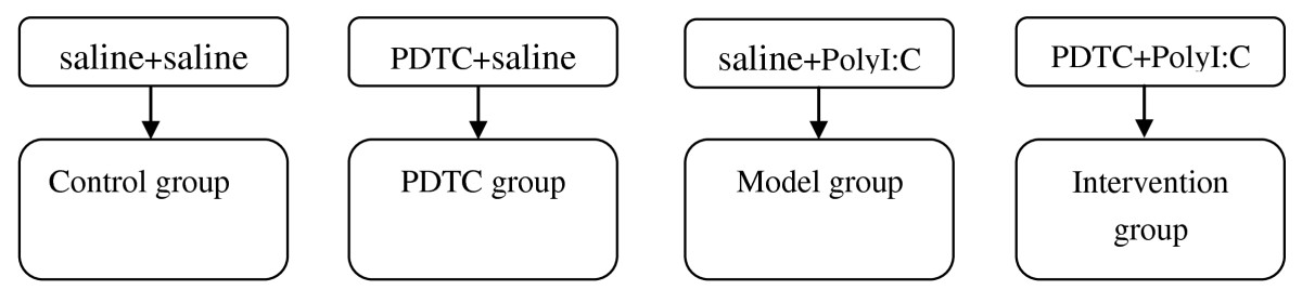 http://static-content.springer.com/image/art%3A10.1186%2F1744-9081-7-50/MediaObjects/12993_2011_Article_370_Fig1_HTML.jpg