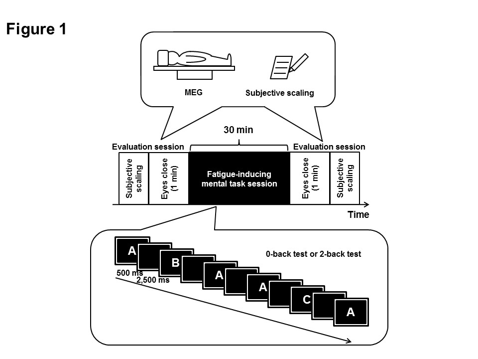 http://static-content.springer.com/image/art%3A10.1186%2F1744-9081-9-2/MediaObjects/12993_2012_Article_429_Fig1_HTML.jpg