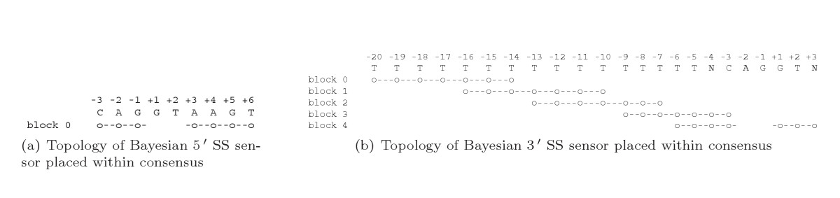 http://static-content.springer.com/image/art%3A10.1186%2F1745-6150-1-10/MediaObjects/13062_2006_Article_10_Fig10_HTML.jpg