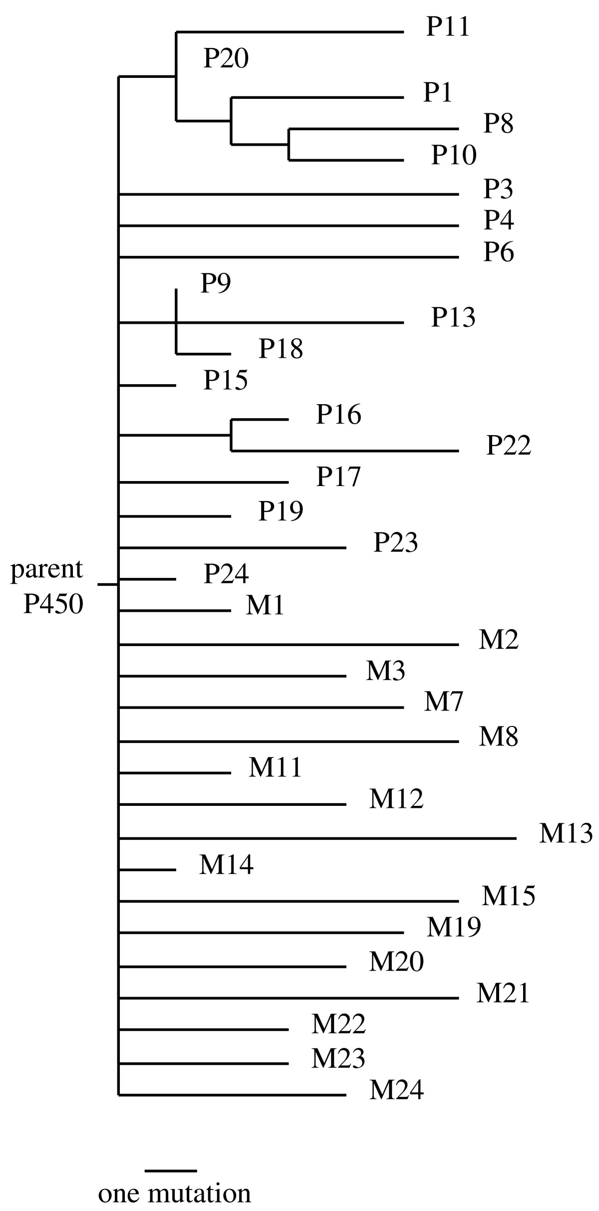 http://static-content.springer.com/image/art%3A10.1186%2F1745-6150-2-17/MediaObjects/13062_2007_Article_56_Fig1_HTML.jpg