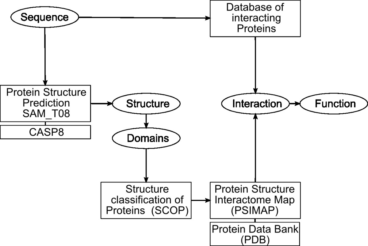http://static-content.springer.com/image/art%3A10.1186%2F1745-6150-4-12/MediaObjects/13062_2009_Article_144_Fig1_HTML.jpg