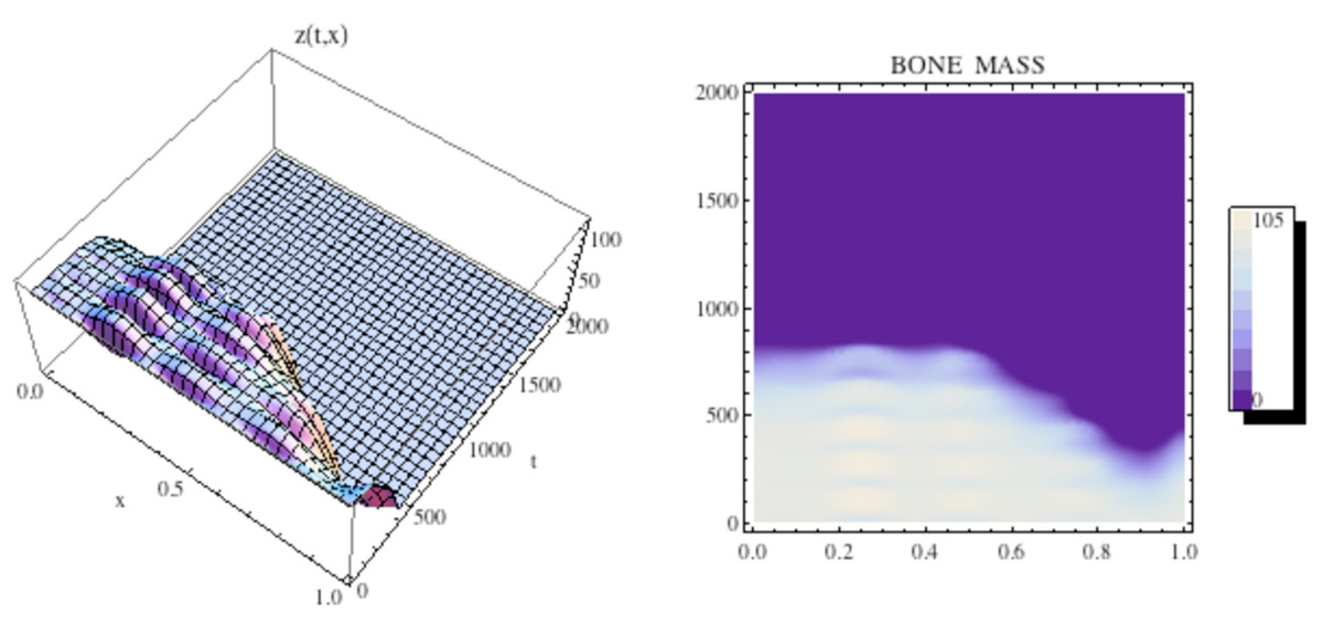 http://static-content.springer.com/image/art%3A10.1186%2F1745-6150-5-28/MediaObjects/13062_2010_Article_211_Fig15_HTML.jpg
