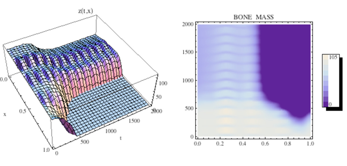 http://static-content.springer.com/image/art%3A10.1186%2F1745-6150-5-28/MediaObjects/13062_2010_Article_211_Fig18_HTML.jpg