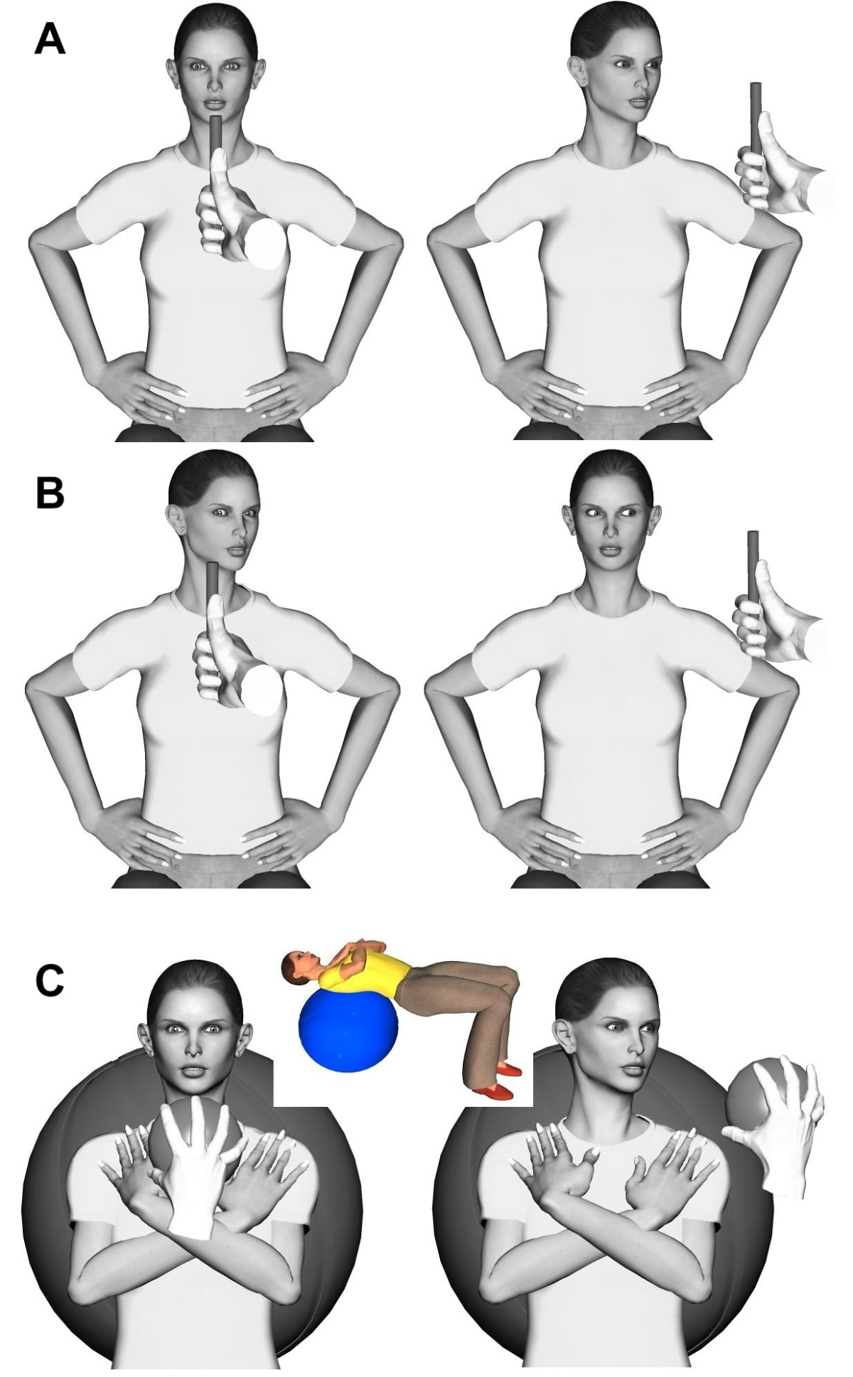 http://static-content.springer.com/image/art%3A10.1186%2F1746-1340-16-15/MediaObjects/12998_2008_Article_87_Fig2_HTML.jpg
