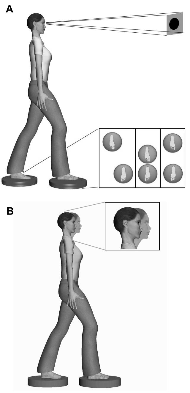 http://static-content.springer.com/image/art%3A10.1186%2F1746-1340-16-15/MediaObjects/12998_2008_Article_87_Fig3_HTML.jpg