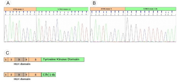 http://static-content.springer.com/image/art%3A10.1186%2F1746-1596-6-19/MediaObjects/13000_2011_368_Fig3_HTML.jpg