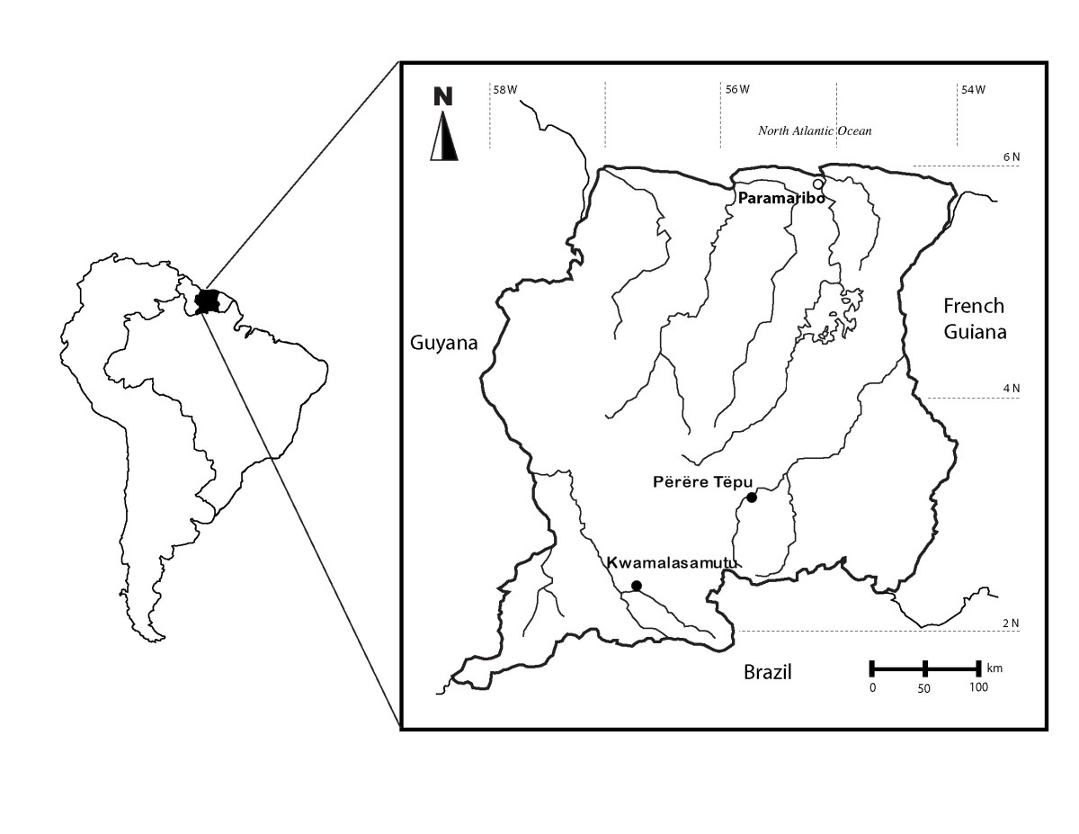 http://static-content.springer.com/image/art%3A10.1186%2F1746-4269-5-27/MediaObjects/13002_2009_Article_157_Fig1_HTML.jpg