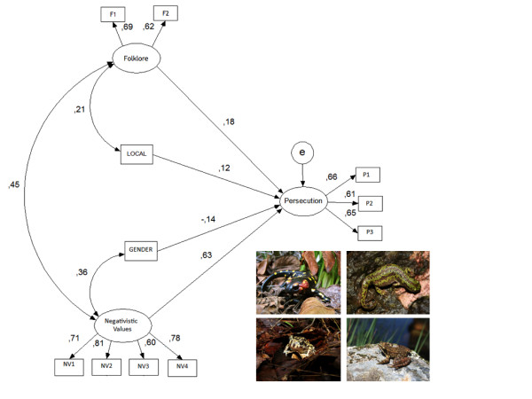 http://static-content.springer.com/image/art%3A10.1186%2F1746-4269-8-8/MediaObjects/13002_2011_258_Fig2_HTML.jpg