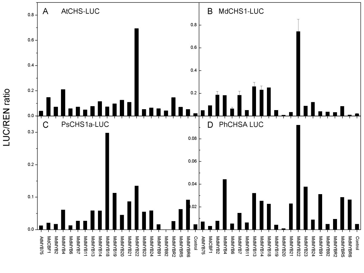 http://static-content.springer.com/image/art%3A10.1186%2F1746-4811-1-13/MediaObjects/13007_2005_Article_13_Fig4_HTML.jpg