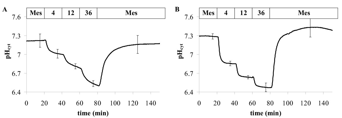 http://static-content.springer.com/image/art%3A10.1186%2F1746-4811-2-7/MediaObjects/13007_2006_Article_21_Fig7_HTML.jpg