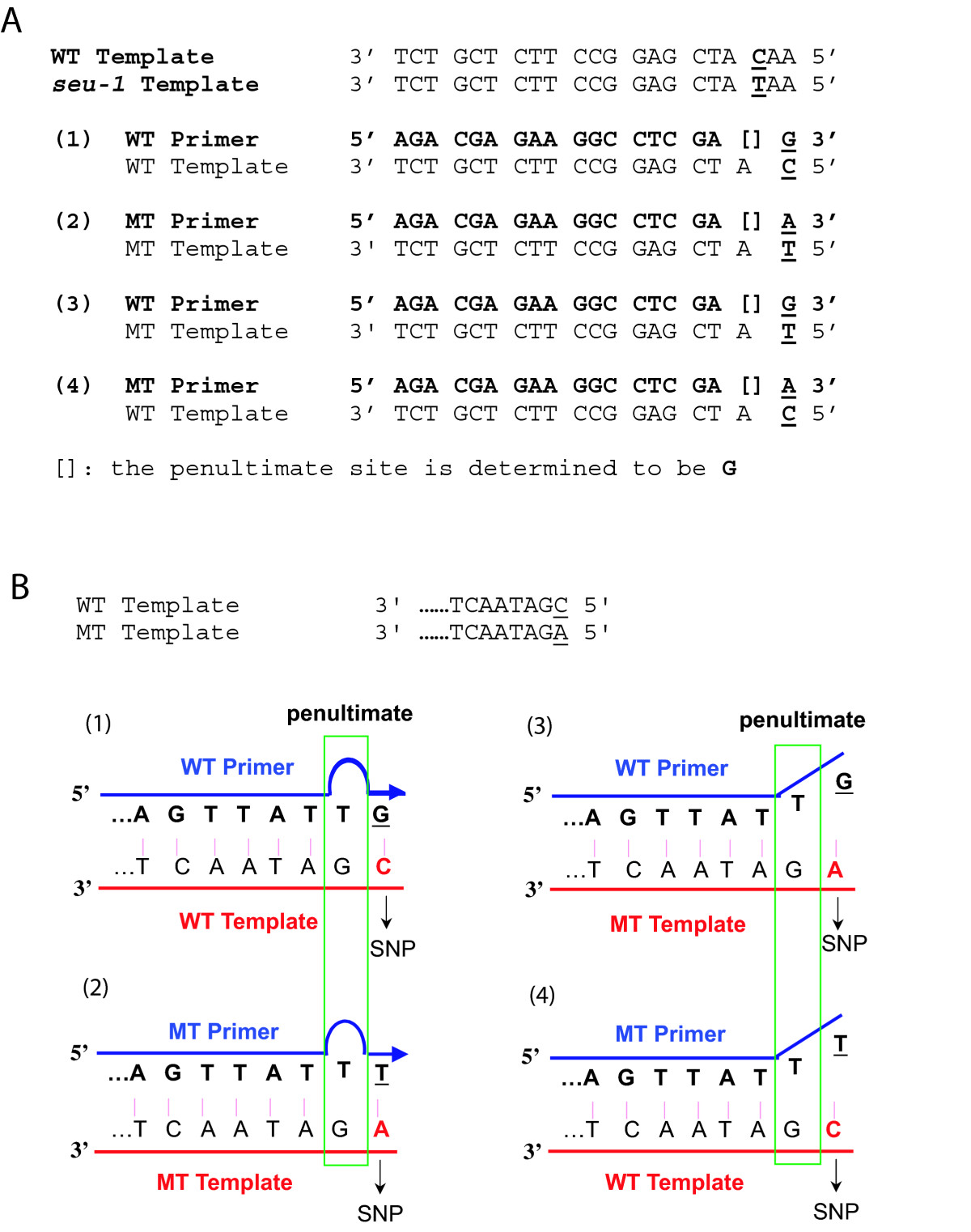 http://static-content.springer.com/image/art%3A10.1186%2F1746-4811-5-1/MediaObjects/13007_2008_Article_76_Fig1_HTML.jpg