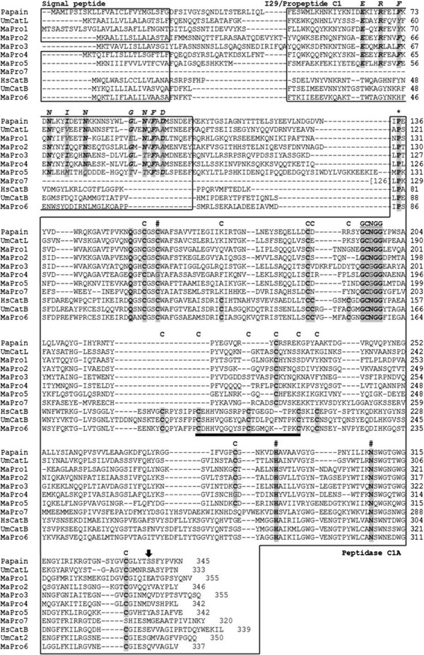 http://static-content.springer.com/image/art%3A10.1186%2F1746-6148-9-10/MediaObjects/12917_2012_596_Fig1_HTML.jpg
