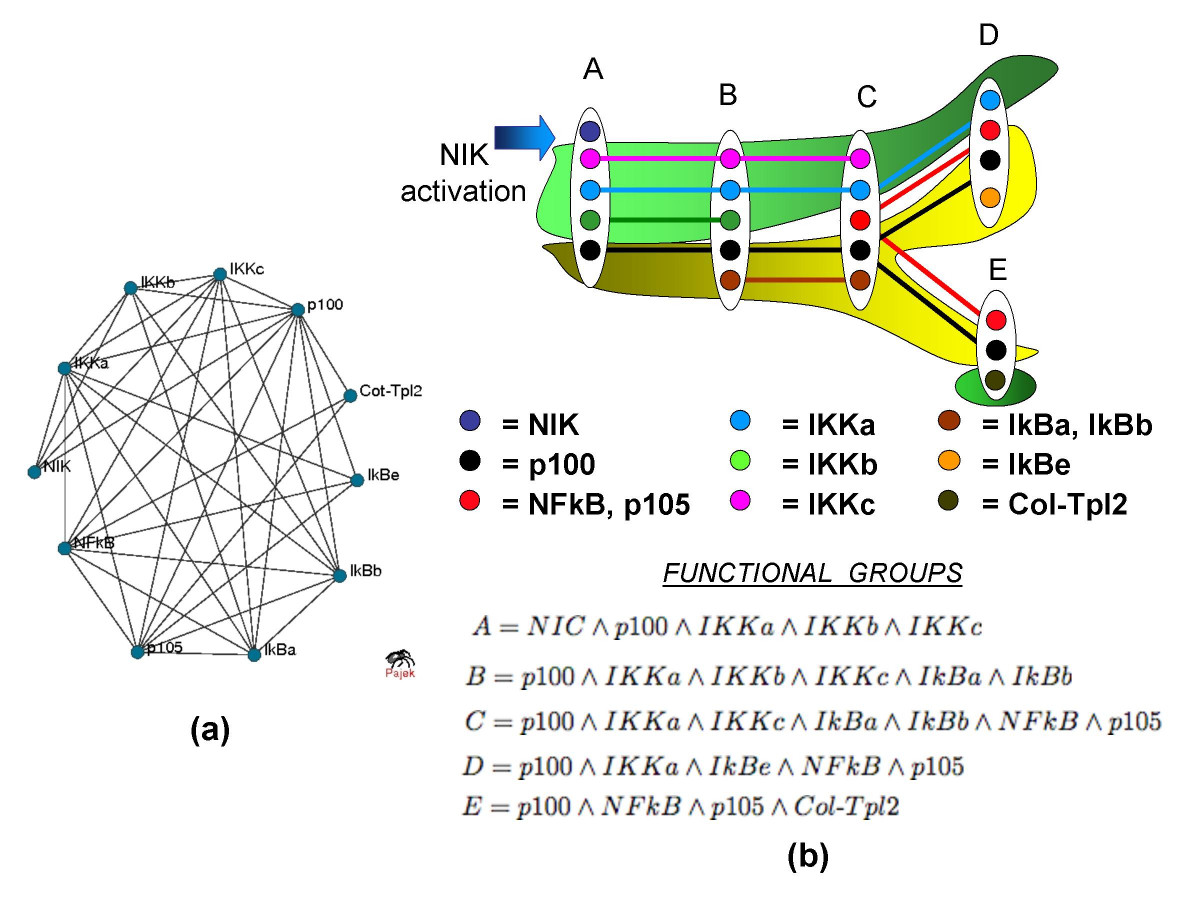http://static-content.springer.com/image/art%3A10.1186%2F1748-7188-1-7/MediaObjects/13015_2006_Article_7_Fig3_HTML.jpg