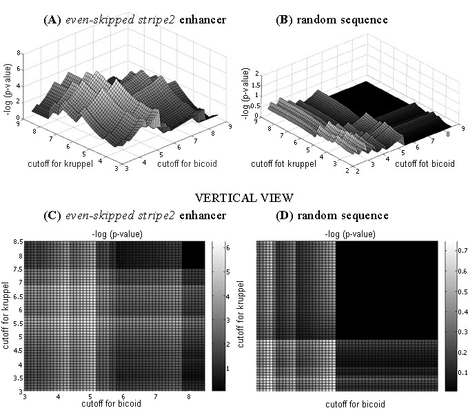 http://static-content.springer.com/image/art%3A10.1186%2F1748-7188-2-13/MediaObjects/13015_2007_Article_38_Fig3_HTML.jpg