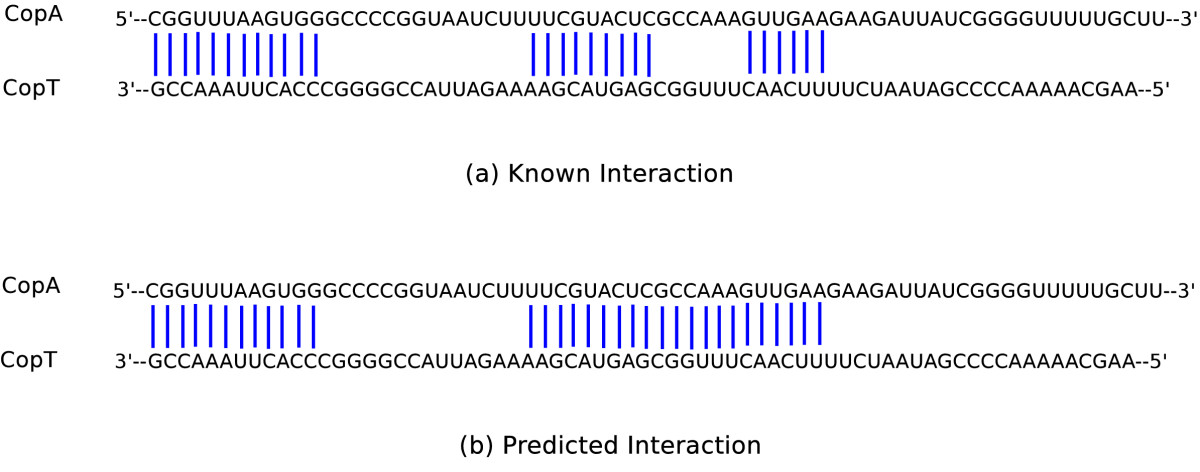 http://static-content.springer.com/image/art%3A10.1186%2F1748-7188-5-5/MediaObjects/13015_2009_Article_78_Fig5_HTML.jpg