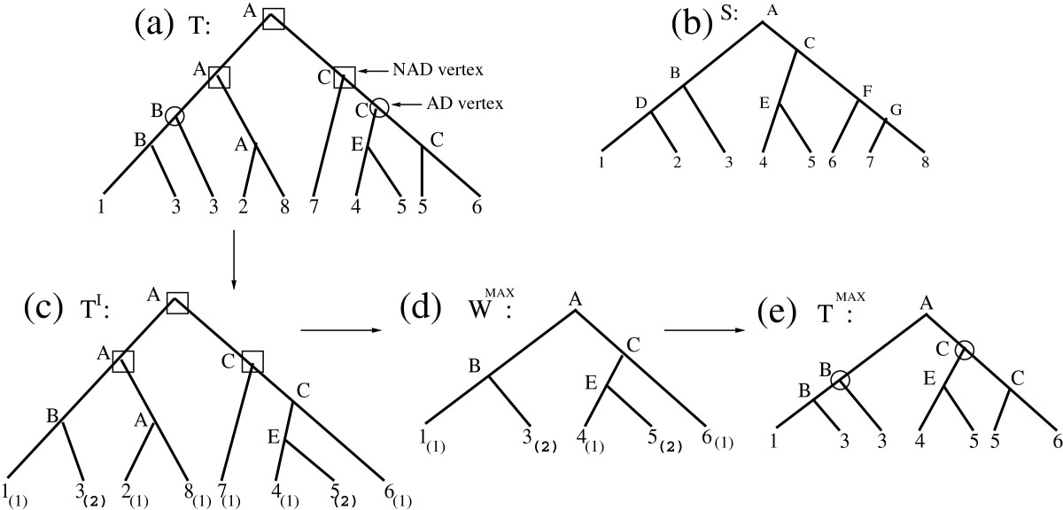 http://static-content.springer.com/image/art%3A10.1186%2F1748-7188-7-31/MediaObjects/13015_2011_Article_173_Fig3_HTML.jpg