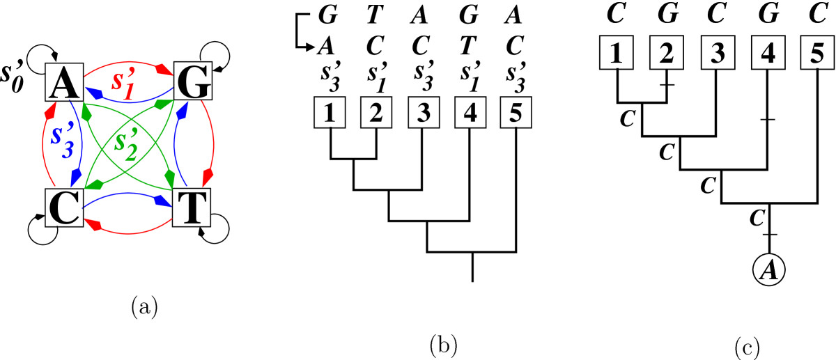 http://static-content.springer.com/image/art%3A10.1186%2F1748-7188-7-36/MediaObjects/13015_2011_Article_171_Fig3_HTML.jpg
