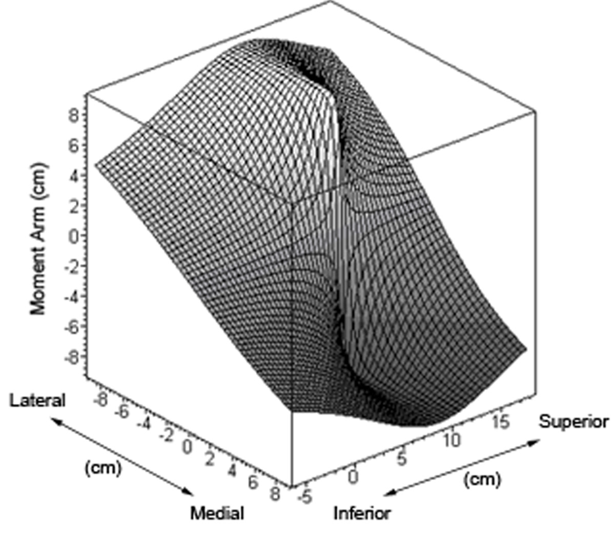 http://static-content.springer.com/image/art%3A10.1186%2F1749-799X-6-6/MediaObjects/13018_2010_Article_241_Fig10_HTML.jpg