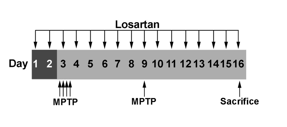http://static-content.springer.com/image/art%3A10.1186%2F1750-1326-2-1/MediaObjects/13024_2006_Article_20_Fig1_HTML.jpg