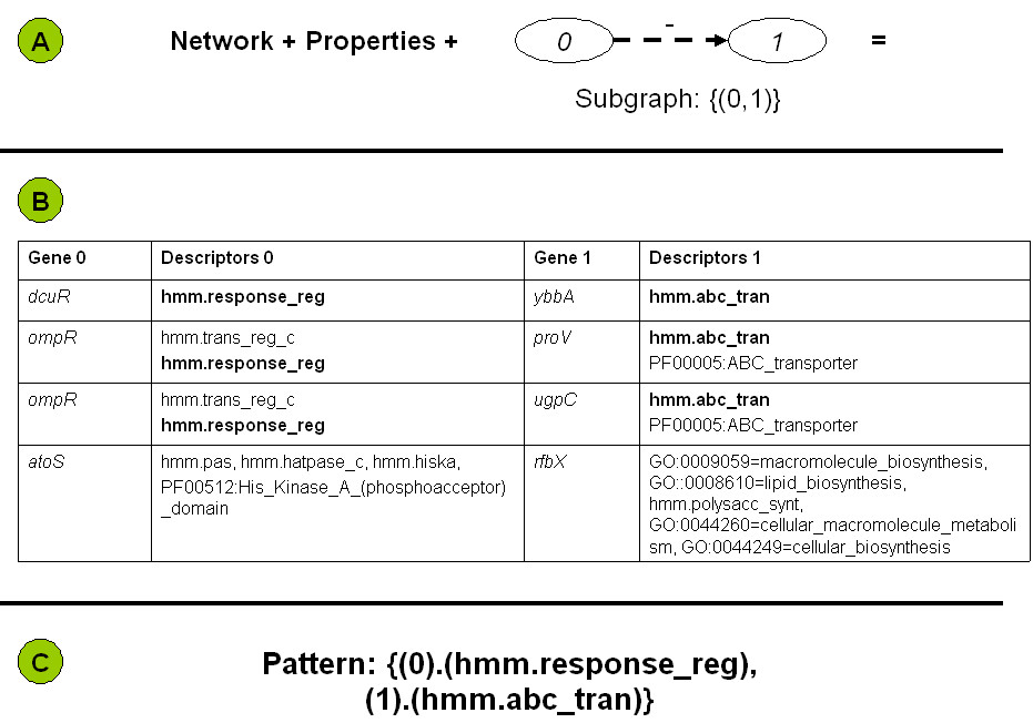 http://static-content.springer.com/image/art%3A10.1186%2F1751-0473-1-8/MediaObjects/13029_2006_Article_8_Fig3_HTML.jpg