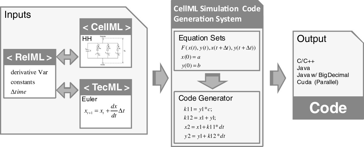 http://static-content.springer.com/image/art%3A10.1186%2F1751-0473-7-11/MediaObjects/13029_2012_Article_86_Fig1_HTML.jpg