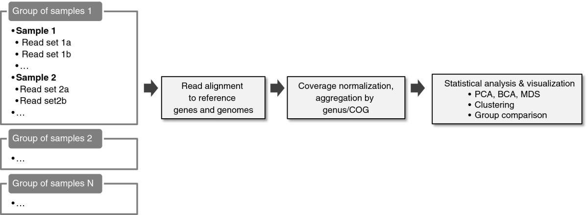 http://static-content.springer.com/image/art%3A10.1186%2F1751-0473-7-13/MediaObjects/13029_2012_Article_81_Fig1_HTML.jpg